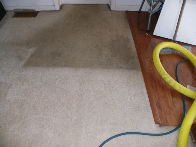 dirty-carpet-before-after-M-M-Cleaning_Central_Il