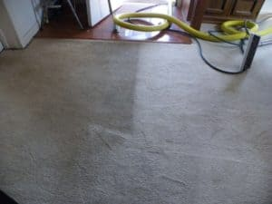 dirty-carpet-before-after-mm-cleaning-bloomington-il