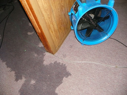 m-m-cleaning-bloomington-il-multiple-water-removal-fans