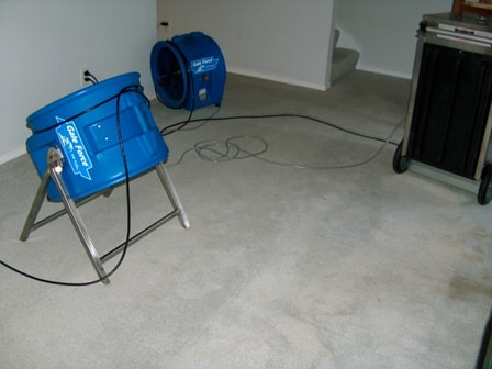 m-m-cleaning-normal-il-multiple-water-removal-fans